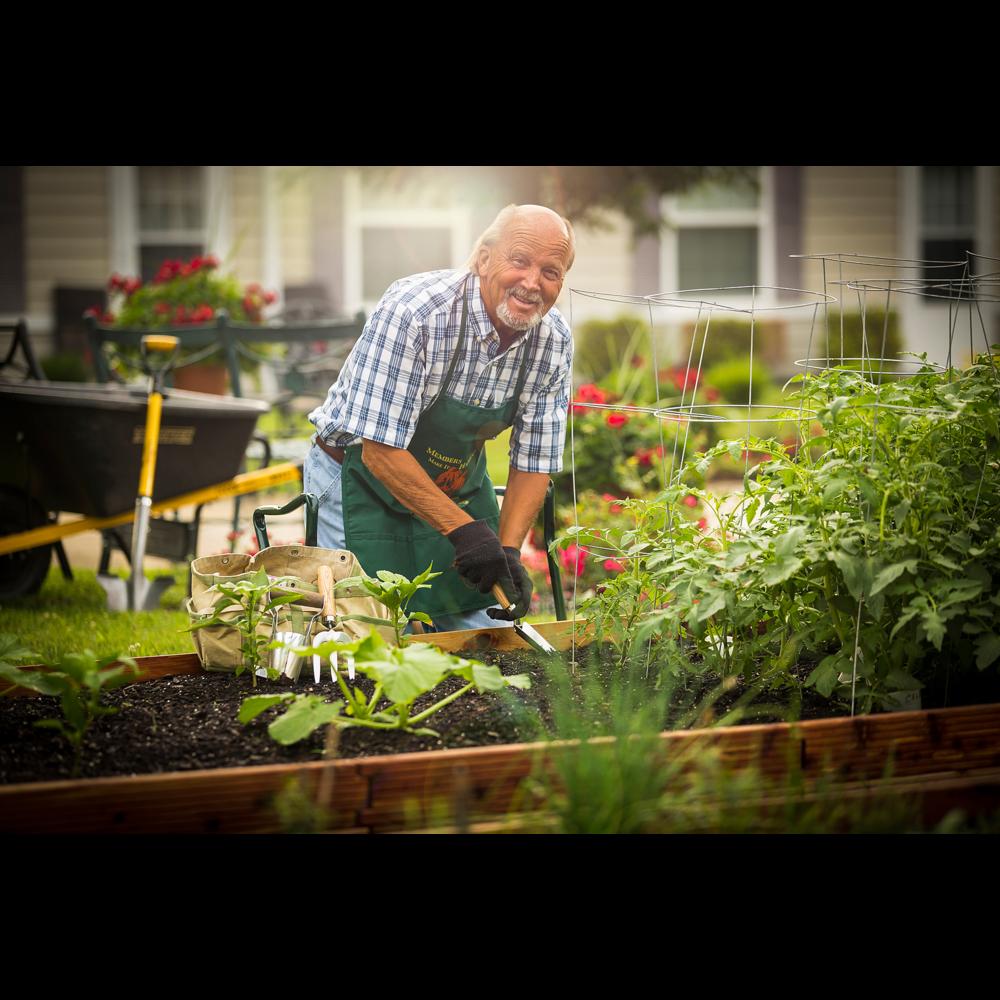 Portrait of man gardening for senior living advertising