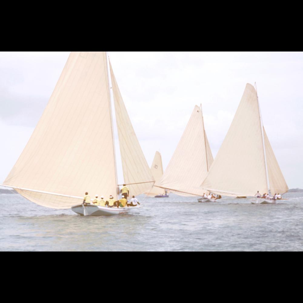 Photo of sailboats racing in Georgetown Bahamas