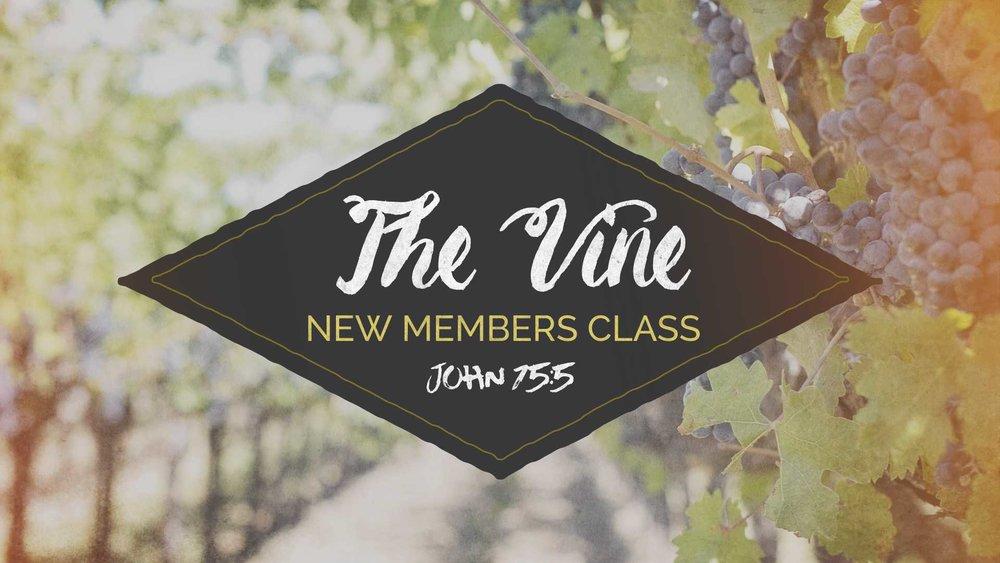 The Vine Class.jpg