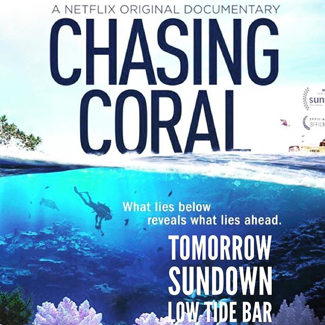 Tuesday at sundown, Low Tide Bar will projecting Chasing Coral under the shade structure at 97th Street Concession. 🌎🐟💚♻️🏄🌊🌴🐬🌏