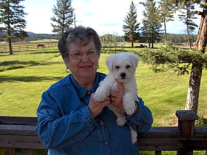 5-05-new-puppy.jpg