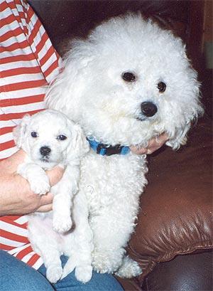 mom-pup-01.jpg