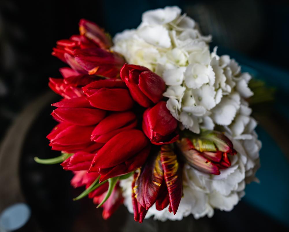 Mellissa-Elli-Wedding-20180428-jakec-0289.jpg