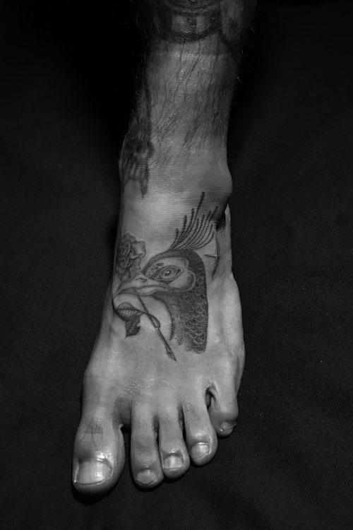 Jose Araujo Peacock Rose Tattoo.jpg