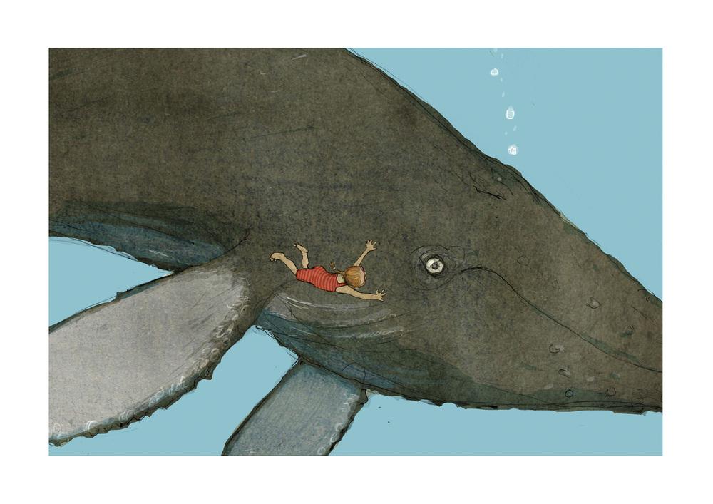 swim-with-whales.jpg