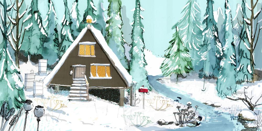 bearwinterhouse.jpg