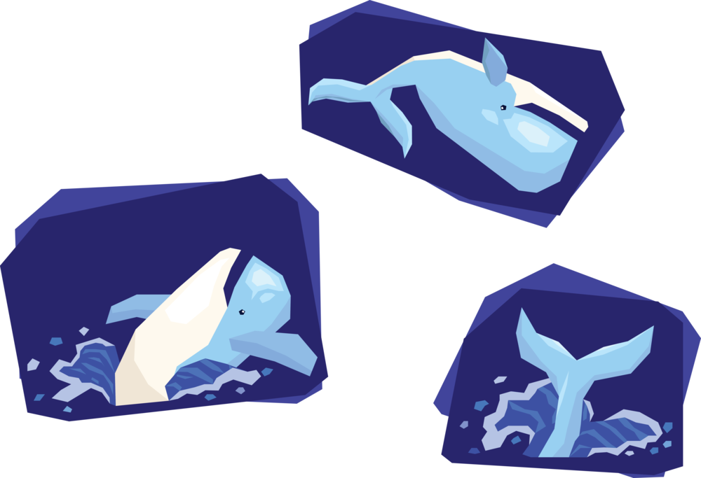 WhaleJumpShirt1.png