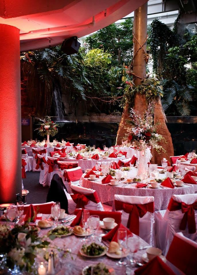 chair-covers-pittsburgh-weddings-3.jpg