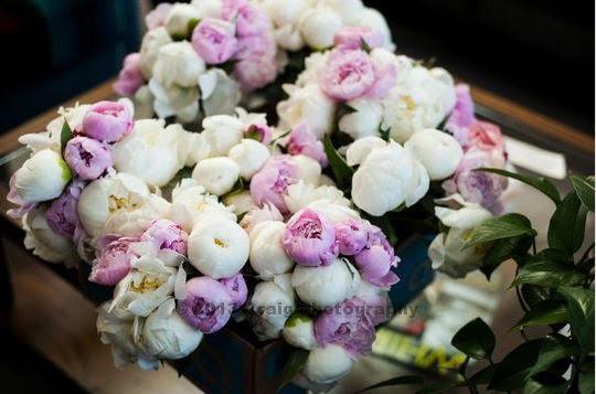 pittsburgh-spring-wedding-22.jpg