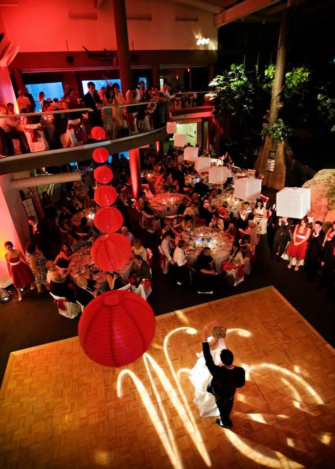 pittsburgh-zoo-wedding-5.jpg
