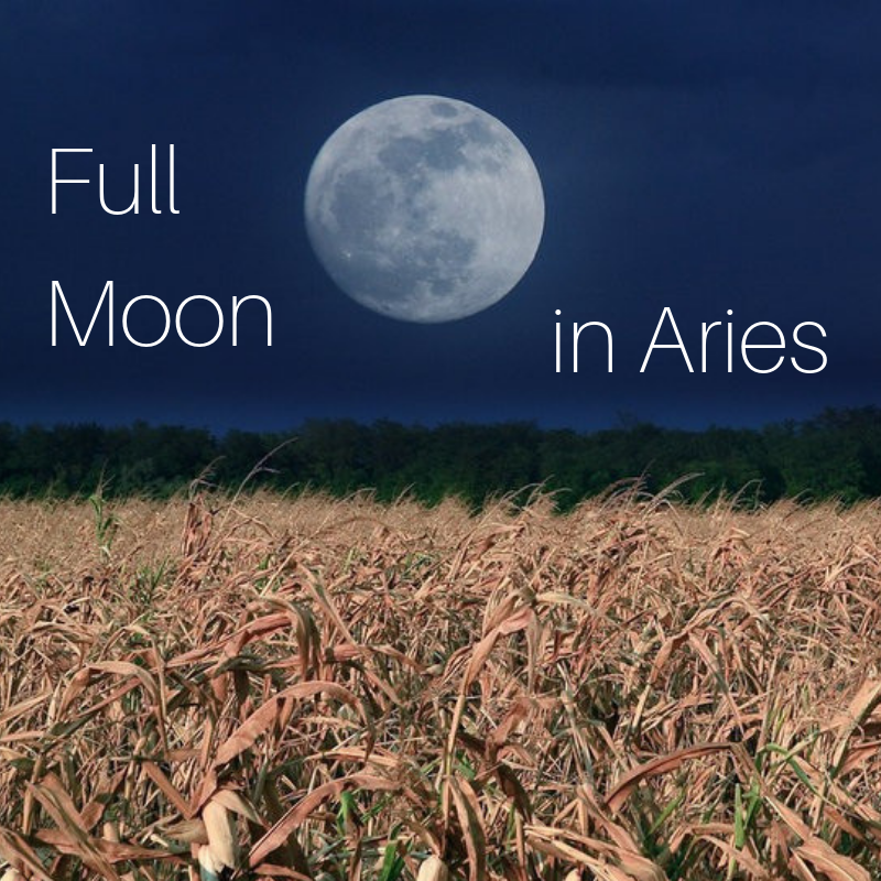 Full Moon (2).png