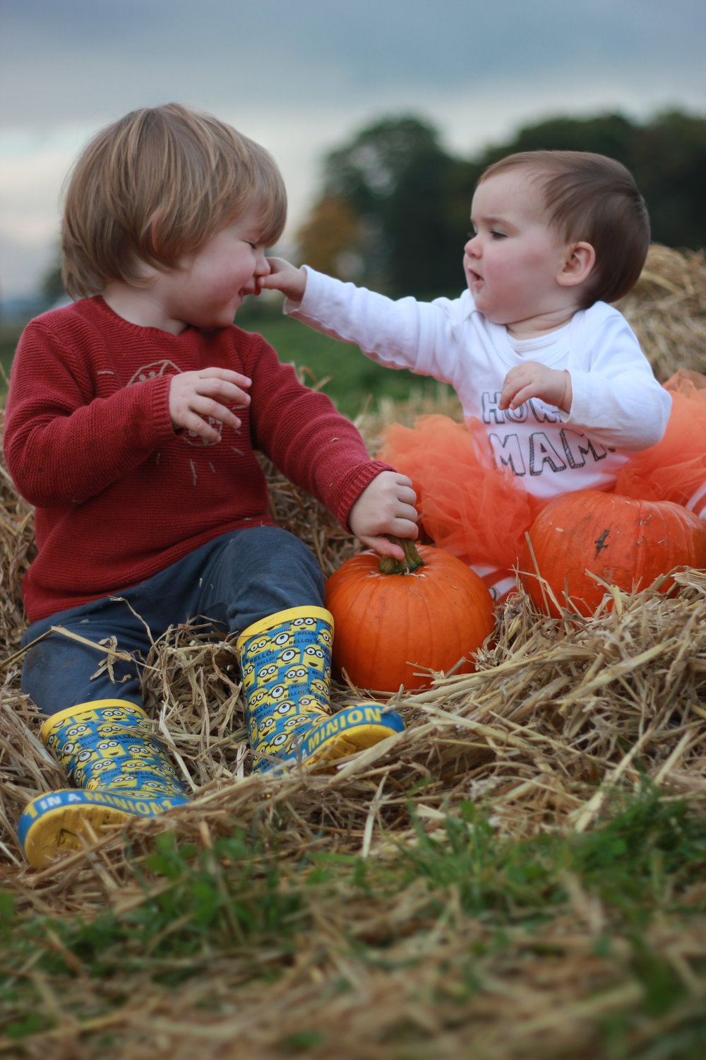Brocksbushes farm shop and tea room Halloween 2016 Northumberland pumpkin patch kids events baby toddler. Eileen and Joe children's entertainer dressed as a witch, with a toddler. Baby and toddler play in a pumpkin patch. siblings
