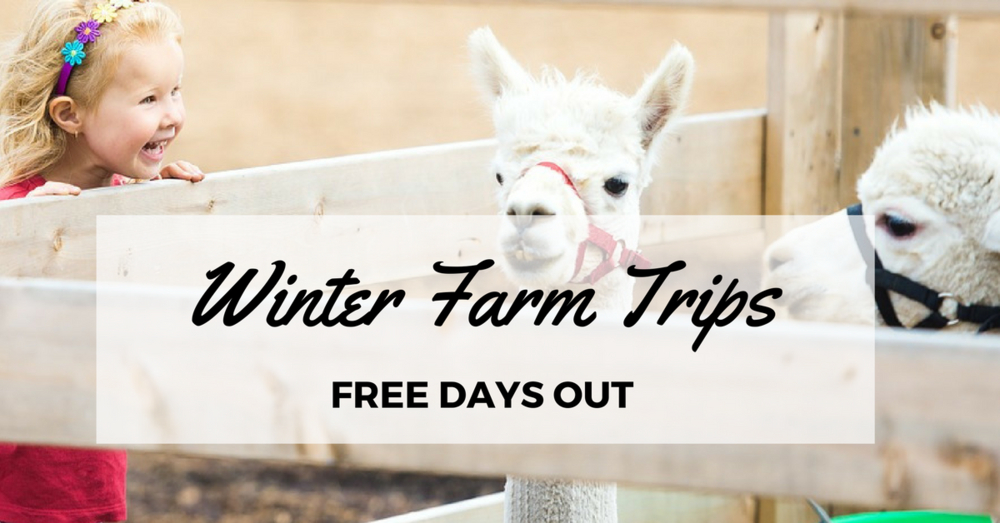 Free farm in the North East for children and toddlers. Bill Quay Farm. Ouseburn Farm. Moorhouse Farm.  Broomhouse Farm. Cheap places to take kids around Newcastle, Durham, South Tyneside.