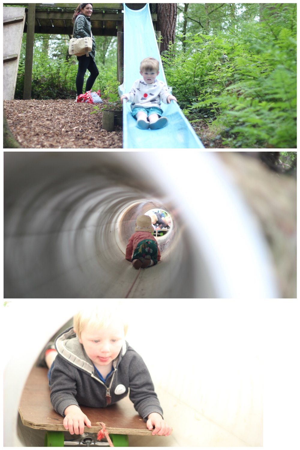 Broom House Farm Woodland Adventure Trail Forest Sprog on the Tyne