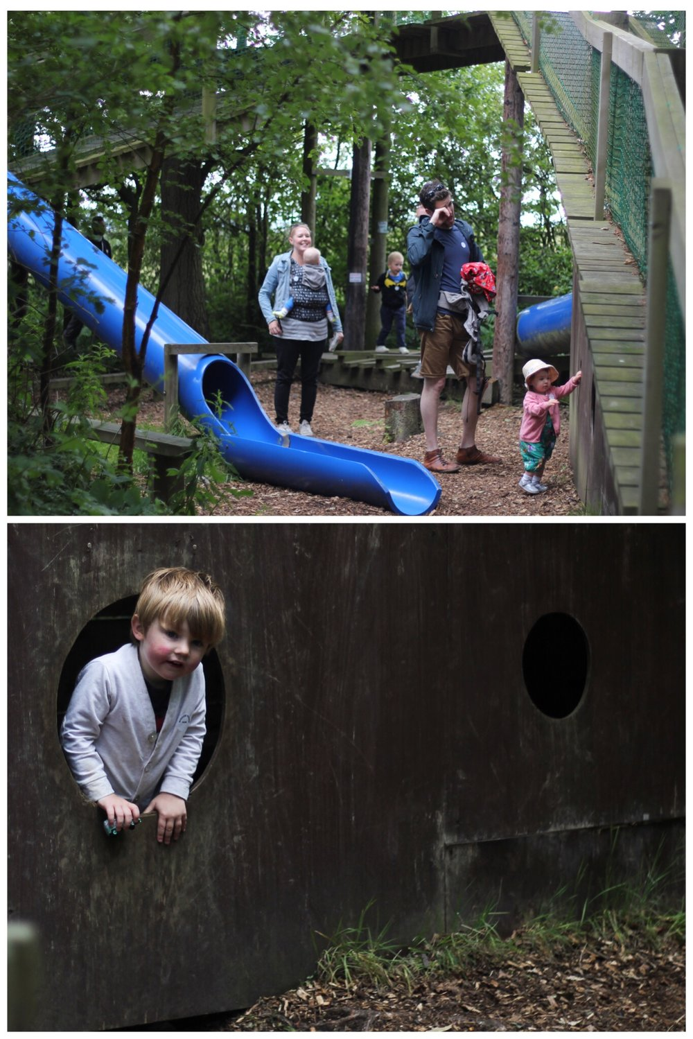 Broom House Farm Woodland Forest Adventure Sprog on the Tyne Days out with kids