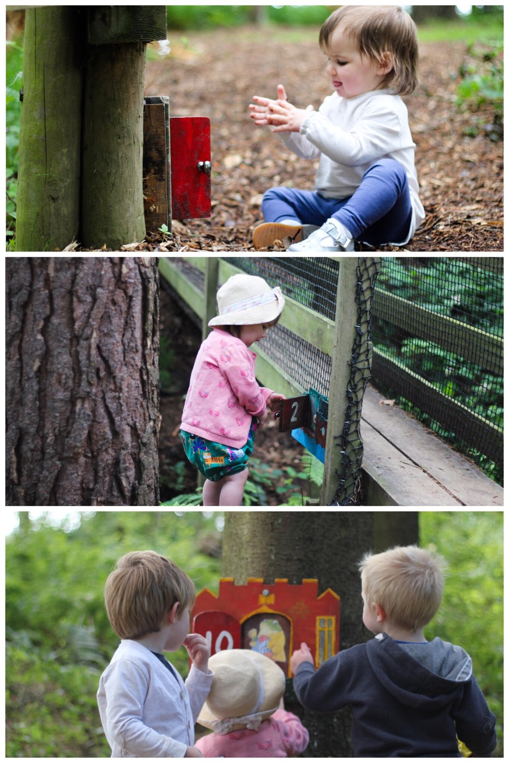 Broom House Farm Woodland Adventure Trail Forest Sprog on the Tyne days out with kids