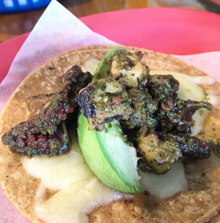 octupus taco.PNG