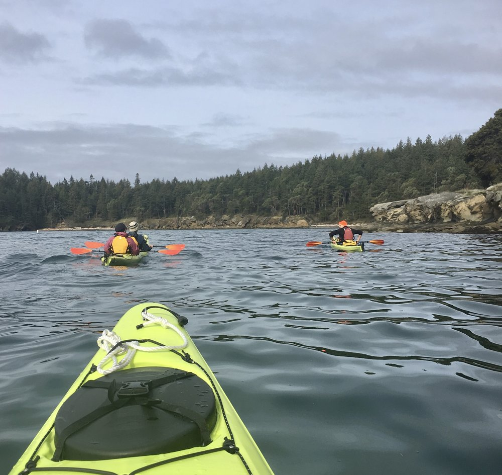 Paddling the Waters of Echo Bay