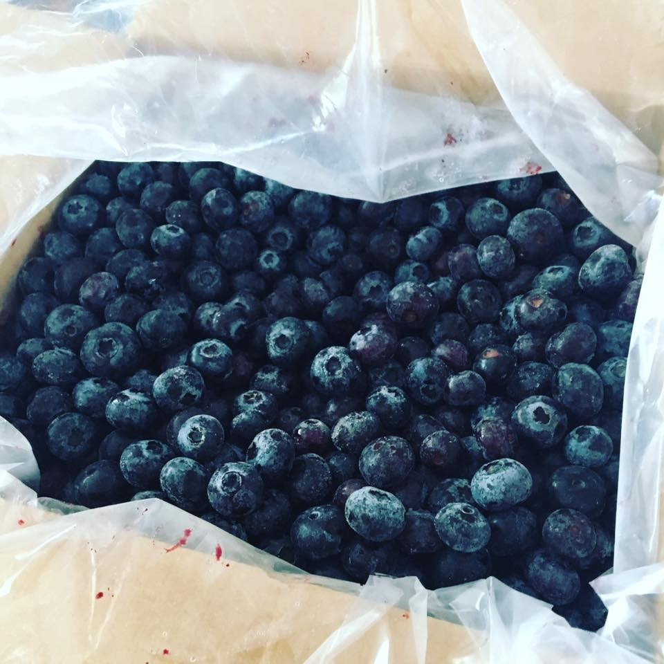 Blueberries 1.jpg