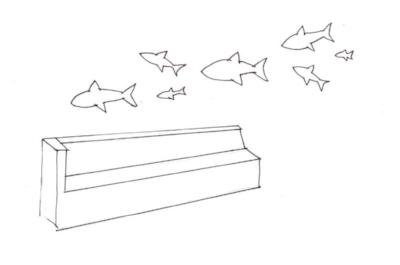 WanderfishPoke.jpg