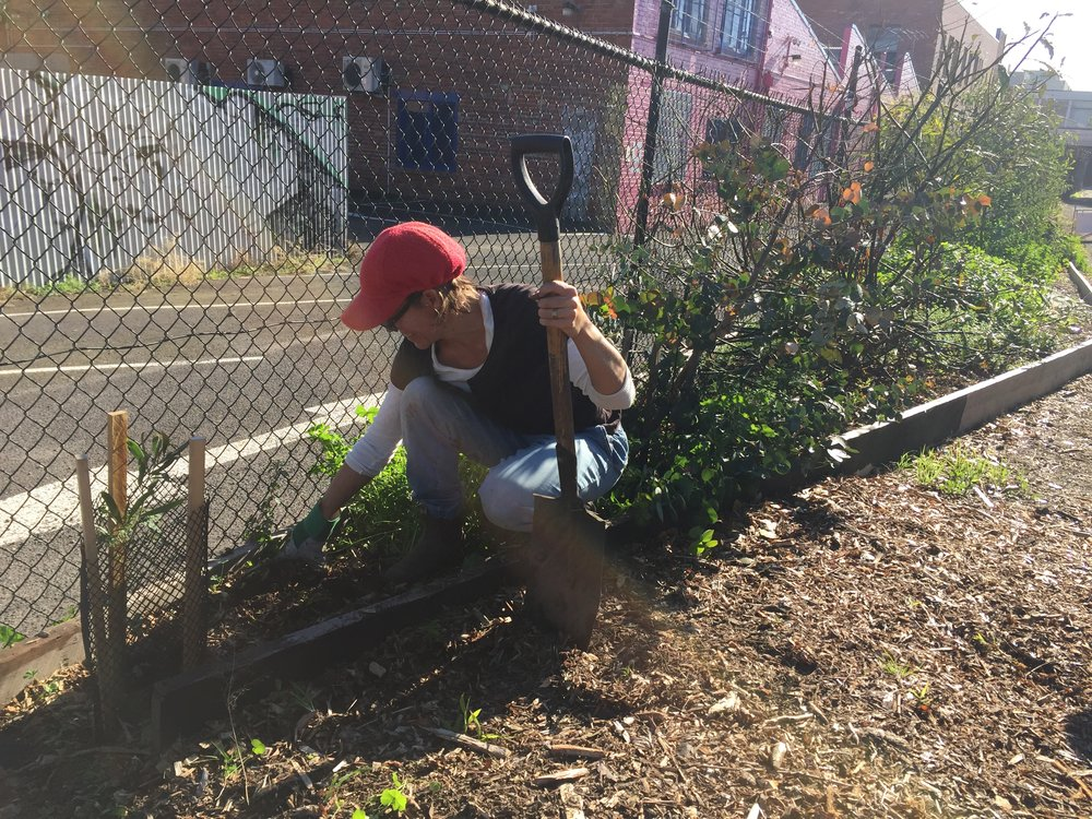 Weeding Brunswick West.JPG