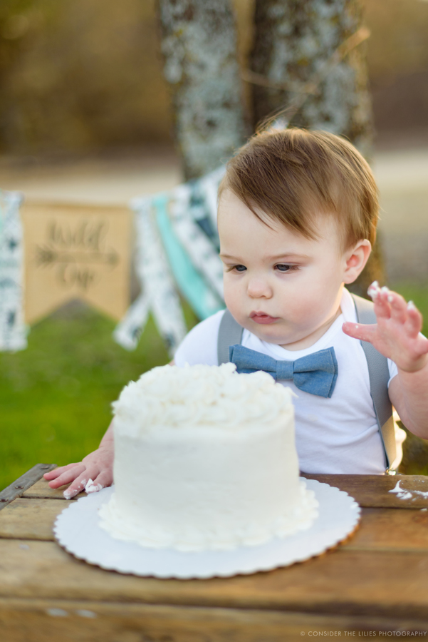 one-year-old-cake-smash-session-north-texas-allen-frisco-mckinney-plano-richardson-dallas-16