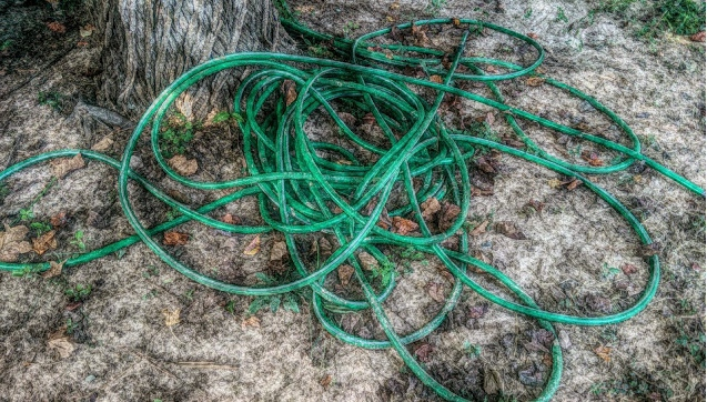 What Projects Are on Your Spring To Do List?                                                                                        I Think My First Project Will be Trying to Untangle This Hose.