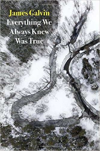Everything We Always Knew Was True by James Galvin