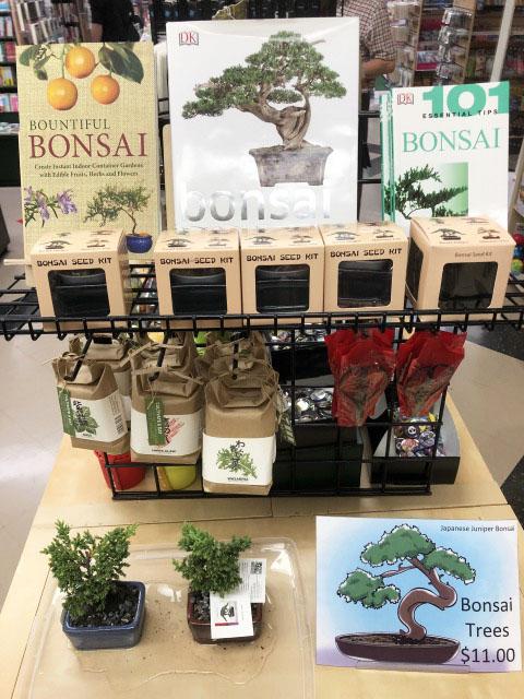 bonsai (1)-edit.jpg