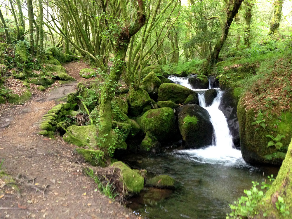 Anne Hughes: Waterfall Along la Ruta de Agua y Piedra, Second Place Camino Landscape