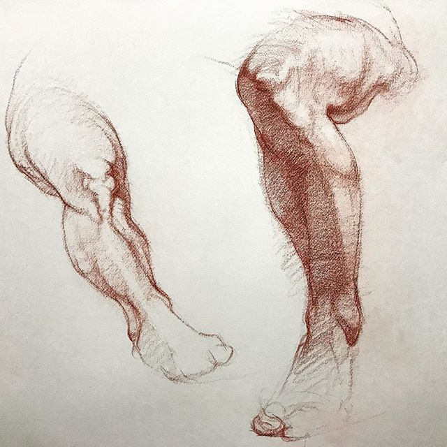 Leg studies done in my figure class from two different models. #drawing #figuredrawing #art