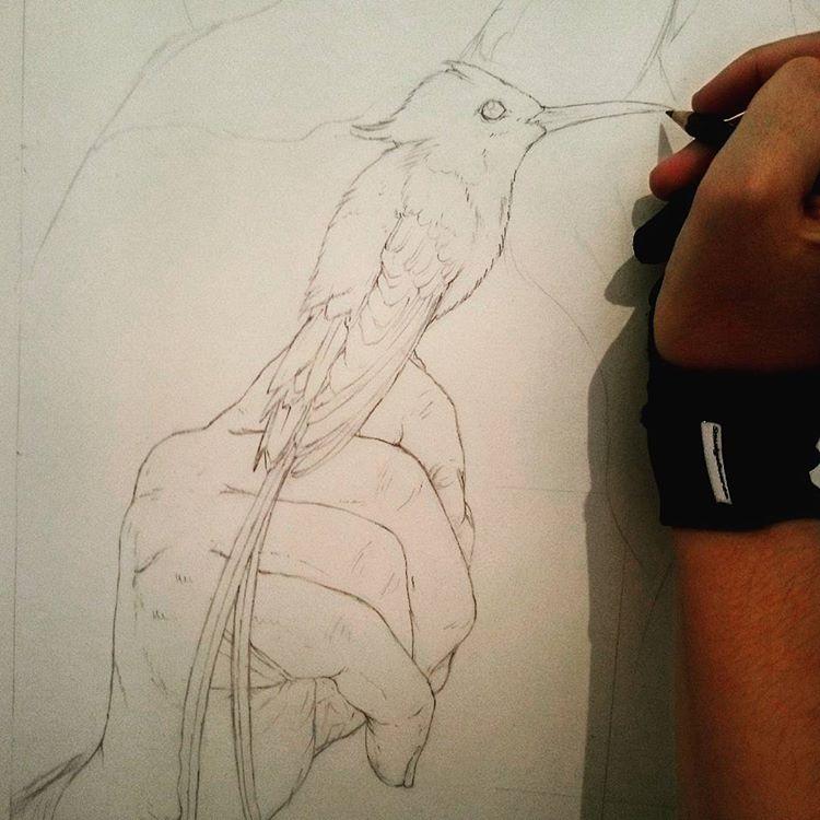 david-sketch-2.jpg