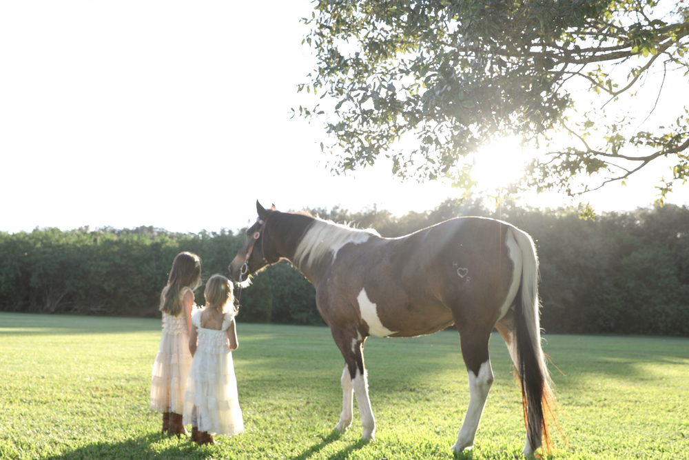 11.03.15_NortonFamily_HorseGirls_Print-16.jpg