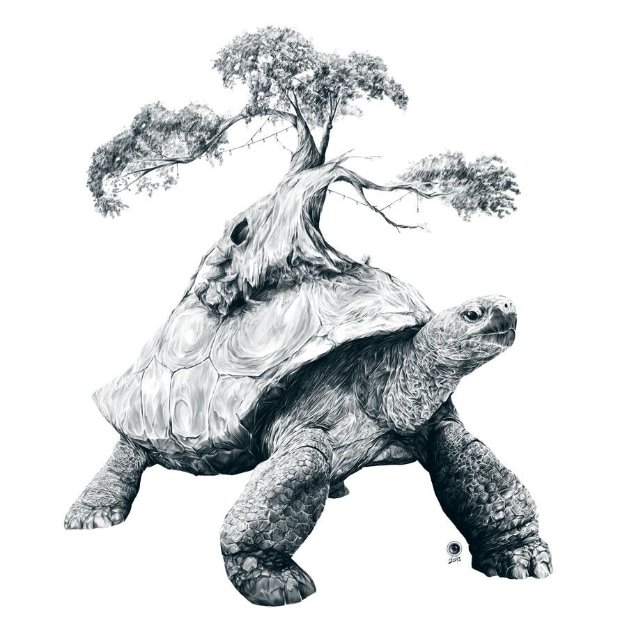Tortoise Tree