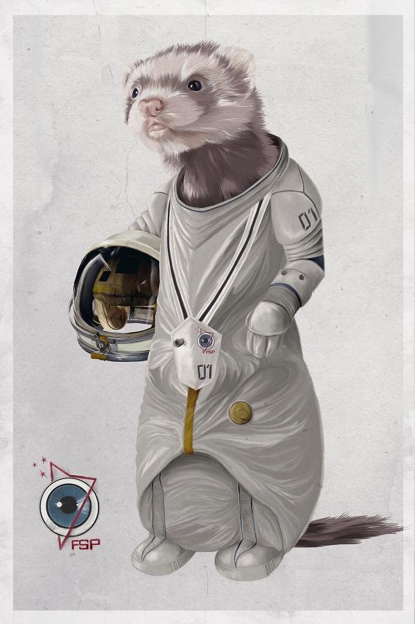 Ferreting in Space