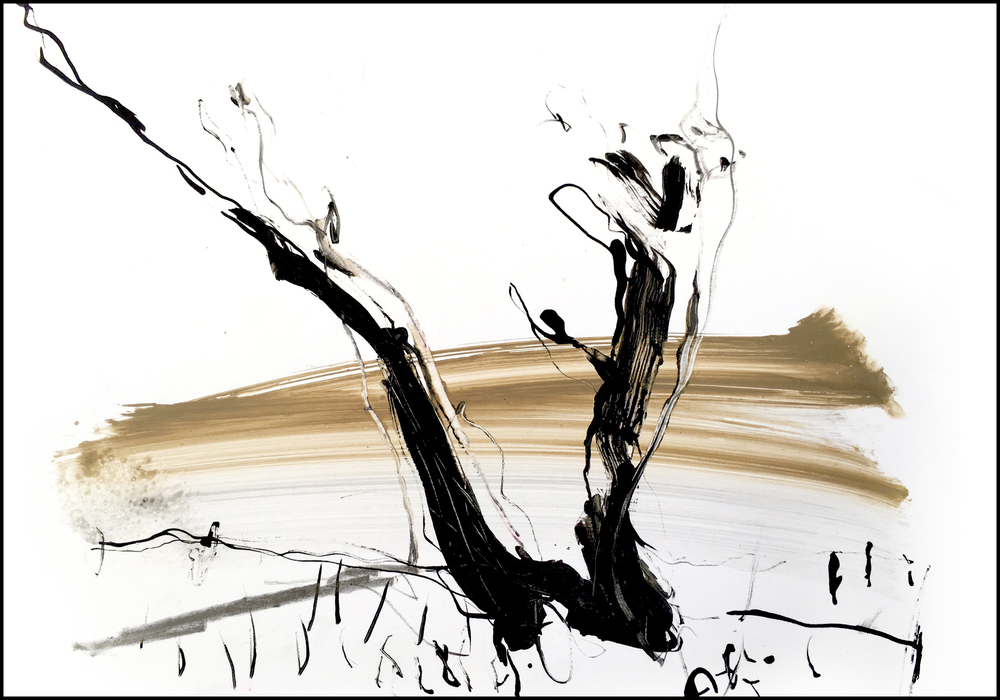 Marsh Shoreline