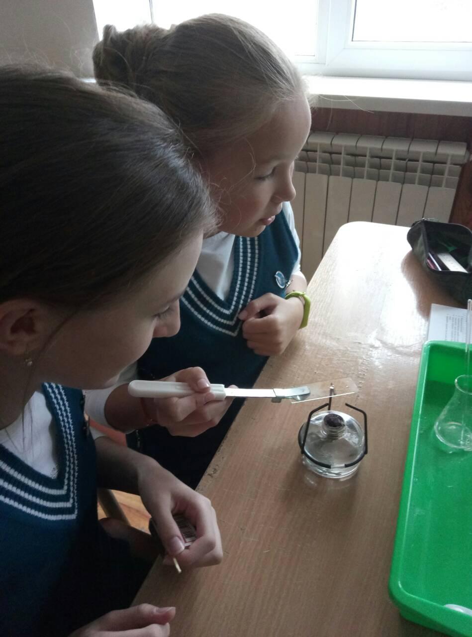5 Школа Леді урок хімії.jpg