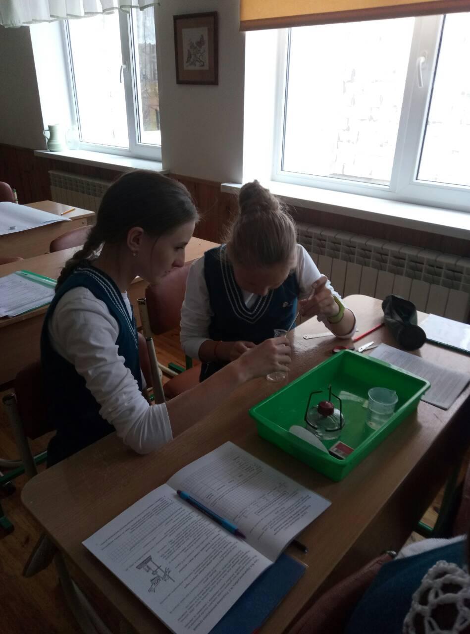 7 Школа Леді урок хімії.jpg