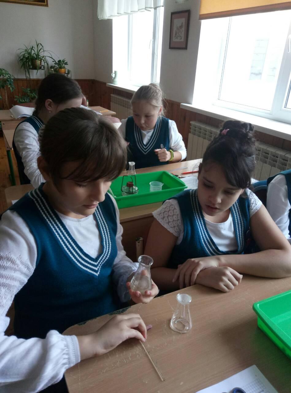 9 Школа Леді урок хімії.jpg