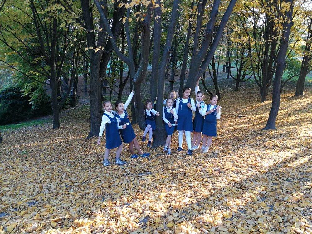 12. Школа Леді Фесиваль хризантем.jpg