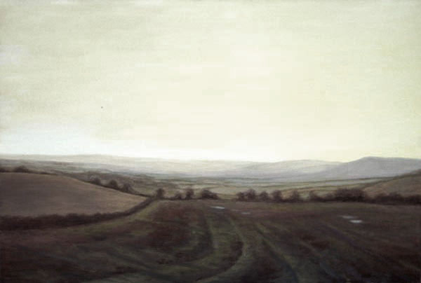 Ploughed field in the Bride Valley, West Dorset