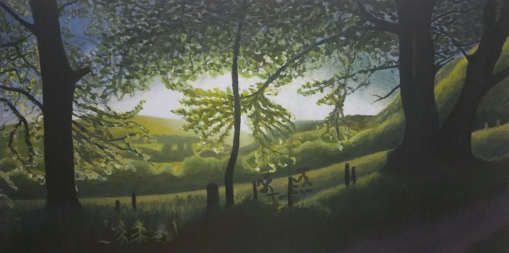 Lewesdon Trees.jpg