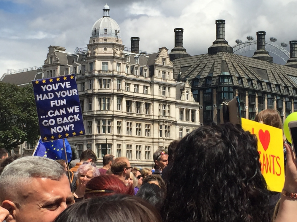 Protesting Brexit in London. March for Europe