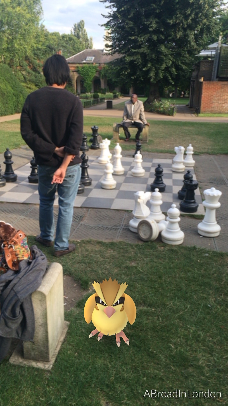 Playing giant Chess in Holland Park. Pidgey clearly disapproves