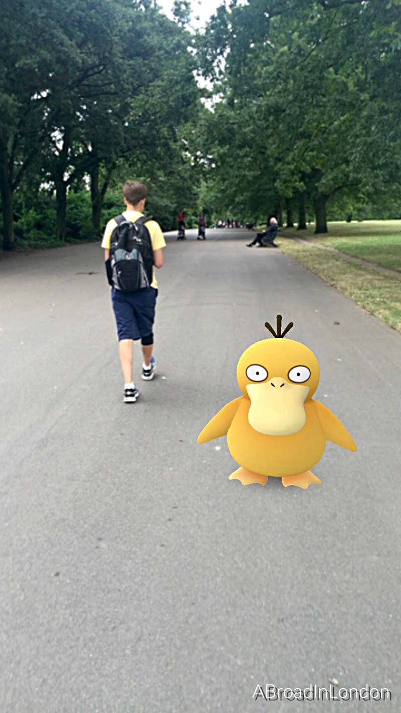 Searching for Pokemon in Regent Park