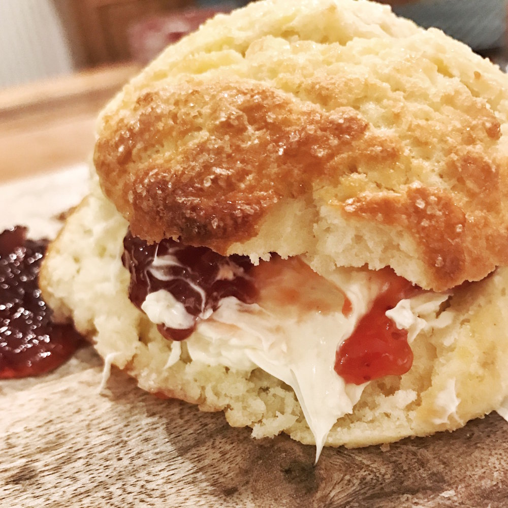 Delicious fresh scone with clotted cream and jam