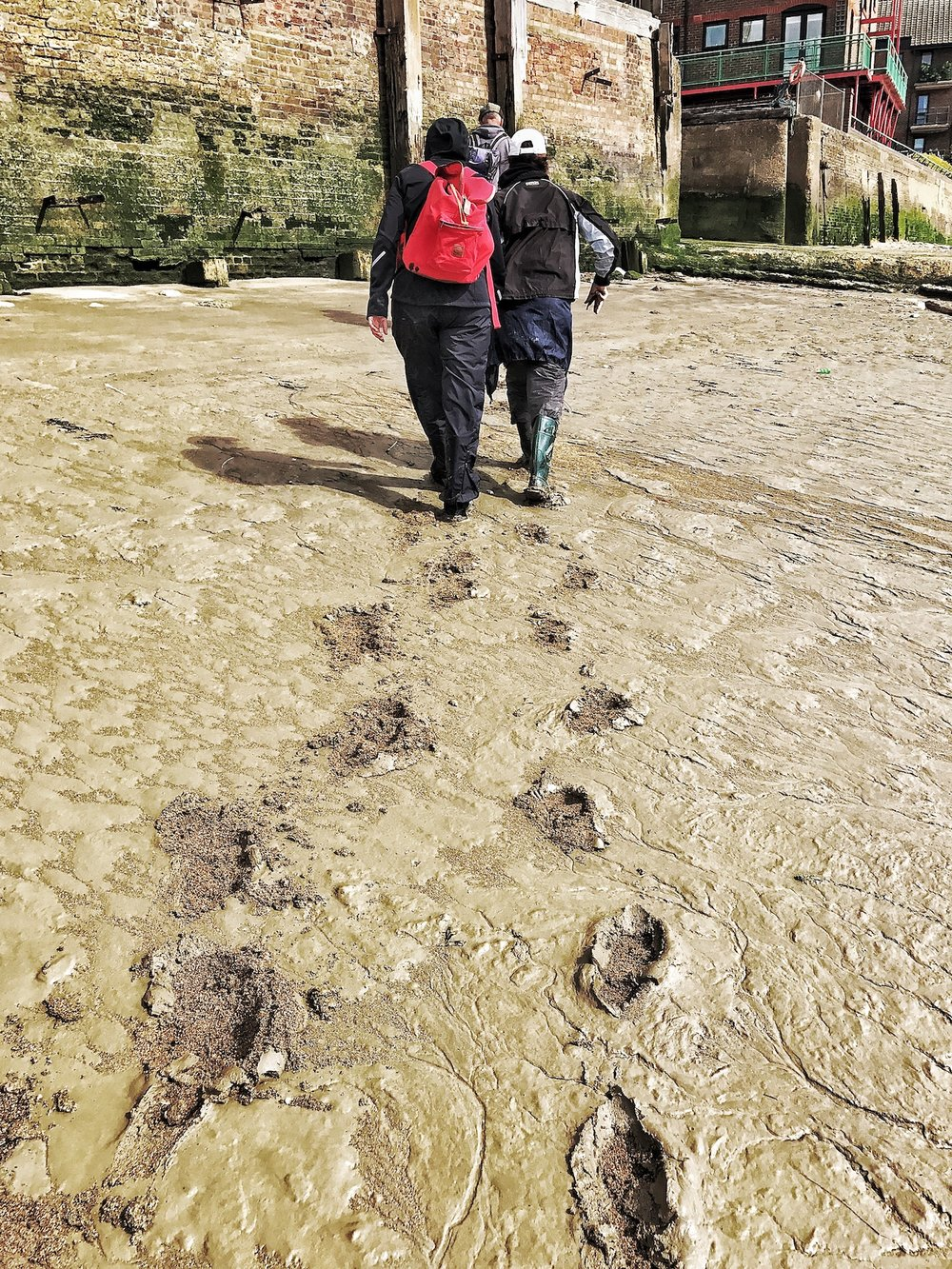 Walking Away leaving Footprints. Low Tide. The River Thames. Mudlarking