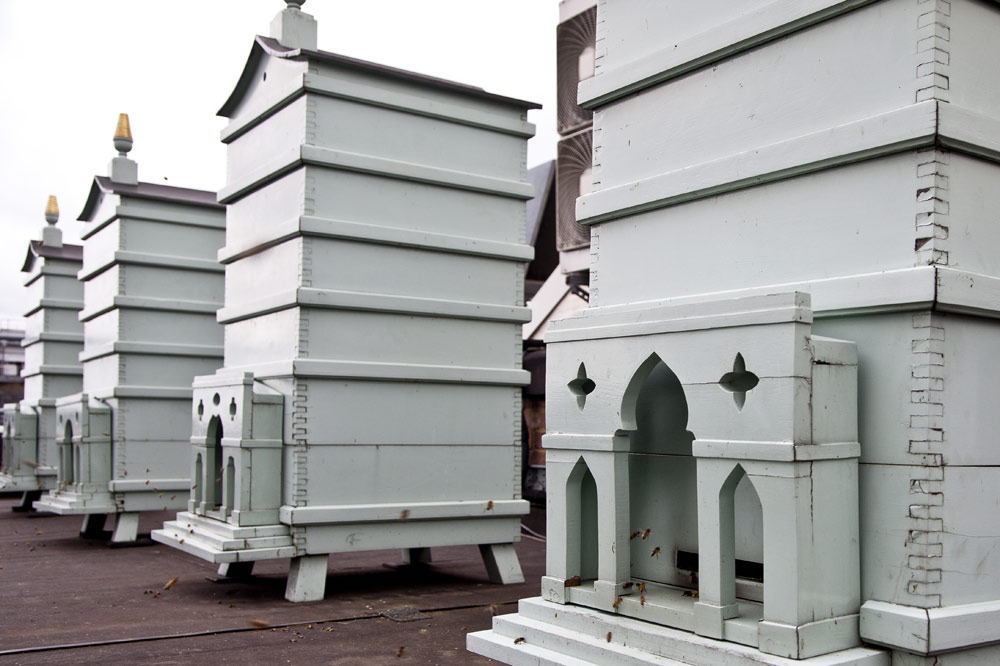 Fortnum & Mason rooftop beehives
