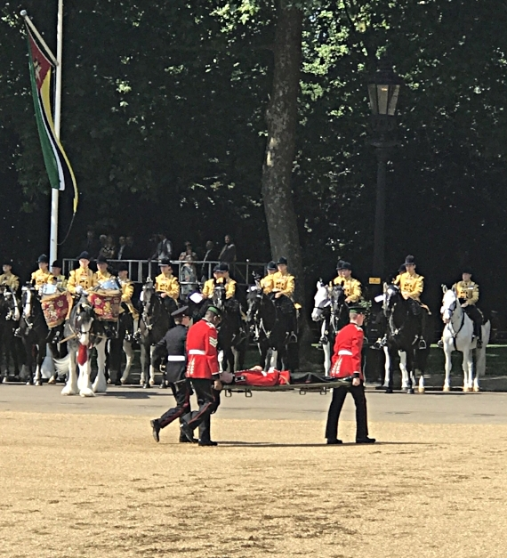 Solider fainted at Trooping Of Colour