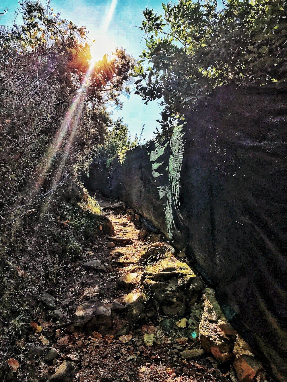 Hike path. Cinque Terre